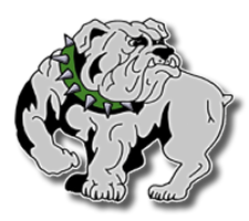 Mount Vernon  Girls Basketball Logo