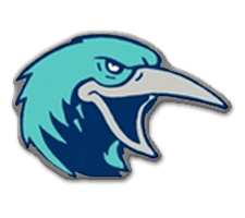 Auburn Riverside  Volleyball Logo