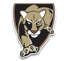 Lakewood  Boys Soccer Logo