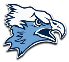 Hockinson  Boys Basketball Logo
