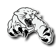 River View  Football Logo
