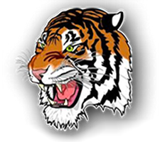 Burlington-Edison  Volleyball Logo